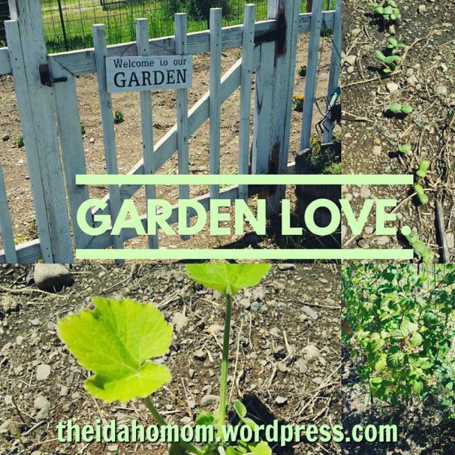 garden love.jpg